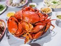Crabs Full Of Plate Royalty Free Stock Photo - 89633305