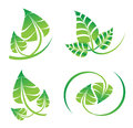 Vector Green Leaf Set, Icons For Organic, Natural, Environment Related Graphic Design Royalty Free Stock Photography - 89643597
