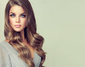 Portrait Of Gorgeous Young Woman With Elegant Make Up And Perfect Hairstyle Stock Images - 89656854