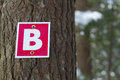 Wood Path Sign Letter B Forest Graphic Typography Stock Photos - 89661633