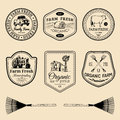 Vector Retro Set Of Farm Fresh Logotypes. Vintage Labels With Hand Sketched Agricultural Equipment Illustrations. Royalty Free Stock Image - 89713826
