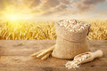 Oat Flakes And Field Stock Photo - 89736340