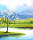 Watercolor Landscape. Flowering Tree By Lake Stock Image - 89800011