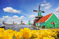 Traditional Dutch Windmill With Tulips In Zaanse Schans, Amsterdam Area, Holland Royalty Free Stock Photography - 89800377