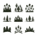 Tree Outdoor Travel Black Silhouette Coniferous Natural Badge, Tops Pine Spruce Branch Cedar And Plant Leaf Abstract Royalty Free Stock Photo - 89807315