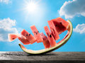 Abstract Funny Watermelon Slice On Wood Table With Sun Sky Summe Stock Photo - 89865650