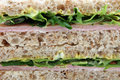 Healthy Mustard And Mayonnaise Egg And Ham Brown Bread Sandwich Royalty Free Stock Image - 905396