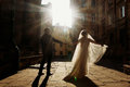 Elegant Bride Holding Hands With Groom In Sunlight Under Arch In Stock Photo - 90020650
