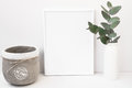 White Background Frame Mockup, Green Eucalyptus In Ceramic Vase, Cement Pot, Styled Image Royalty Free Stock Image - 90106116