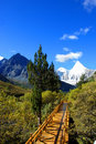 The Road Leading To The Snow Mountain Stock Photo - 9026700