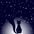 Silhouette Of Sitting Cat On Dark Blue Night Sky Background With Stars. Stock Photography - 90282572