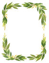 Watercolor Bay Leaf Wreath Isolated On White Background. Stock Photography - 90291622