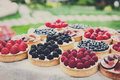 Fruit And Berry Tarts Dessert Tray Assorted Outdoors Stock Photos - 90363343