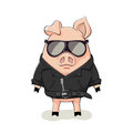 Pig In A Black Leather Jacket Stock Photography - 90432562
