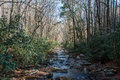 Oconaluftee River, Great Smoky Mountains National Park Royalty Free Stock Photography - 90475147