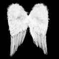 Angel Wings Royalty Free Stock Images - 90576549