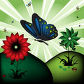The Butterfly Stock Images - 9061464