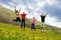 Happy Friends Jumping In Meadow Stock Photos - 9064913
