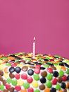 Birthday Cake Stock Photo - 9069640