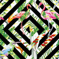Tropical Birds Leaves Seamless Geometric Background Stock Image - 90609321