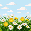 Fresh Spring, Daisies And Dandelions, Grass Stock Images - 90705254