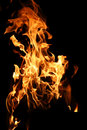 Tongues Of Flame Of Fire Of Orange-yellow Color From Burning Fir Royalty Free Stock Photography - 90721057