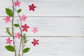 Pink And Red Flowers With Branch And Green Leaves Stock Photos - 90723973