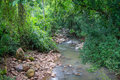 Small Stream In The Forest Stock Photography - 90728902