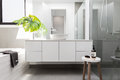 Luxury White Family Bathroom Styled With Greenery Stock Image - 90766061