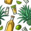 Seamless Pattern Of Bottle, Glass Tequila, Salt, Cactus And Lime Stock Image - 90798041