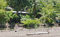 Small Lagoon On The Beach Of Drake In The Province Of Puntarenas, Costa Rica Stock Photos - 90808713