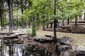 Bridge And Reflection Pond In Ozark Mountains Royalty Free Stock Photo - 90878515