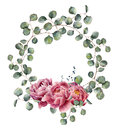 Watercolor Wreath With Eucalyptus Branch And Peony. Hand Painted Floral Illustration With Round Leaves Of Silver Dollar Royalty Free Stock Image - 90900226