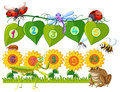 Number One To Ten On Leaves And Flowers Stock Image - 90904421