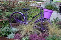 Old Bicycle With Flowers Royalty Free Stock Photography - 91017487