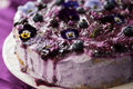 Layered Cake With Blueberries And Lilac Stock Images - 91018284