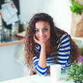Smiling Young Woman With Laptop In The Kitchen At Home Stock Photography - 91035672