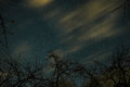 Clouds Passing In The Moon Light By Over A Forest And On A Night Sky Full Of Stars Royalty Free Stock Images - 91059589