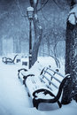Benches In The Winter Park Royalty Free Stock Photography - 9115977