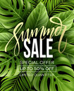 Sale Banner, Poster With Palm Leaves, Jungle Leaf And Handwriting Lettering. Floral Tropical Summer Background. Vector Royalty Free Stock Photos - 91191588