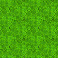 Four Leaf Clover Seamless Pattern. Lucky Spring Background With Shamrock For Textiles, Interior Design, Book Design Royalty Free Stock Photography - 91202147