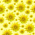 Seamless Infinite Yellow Floral Background. For Design And Printing. Background Of Natural Chrysanthemums. Stock Images - 91275634