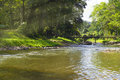 Morning Time Of Country River In The Wood. Royalty Free Stock Images - 91534439