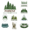 Tree Outdoor Travel Green Silhouette Forest Badge Coniferous Natural Logo Badge Tops Pine Spruce Vector. Stock Images - 91573274