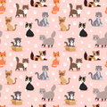 Cat Breed Cute Kitten Pet Portrait Fluffy Young Adorable Cartoon Animal Vector Illustration Seamless Pattern Royalty Free Stock Photos - 91691038