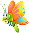 Butterfly With Yellow And Pink Wings Stock Photo - 91694630