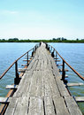 Abandoned Wooden Long Bridge Over The Lake  Stock Photography - 91717402