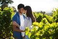 Happy Young Couple Standing Face To Face At Vineyard Stock Image - 91757851