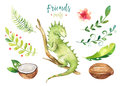 Baby Animals Nursery Isolated Illustration For Children. Watercolor Boho Tropical Drawing, Child Cute Tropic Iguana Royalty Free Stock Photo - 91778905