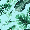 Seamless Watercolor Pattern Of Tropical Leaves, Dense Jungle. Ha Royalty Free Stock Photography - 91780877